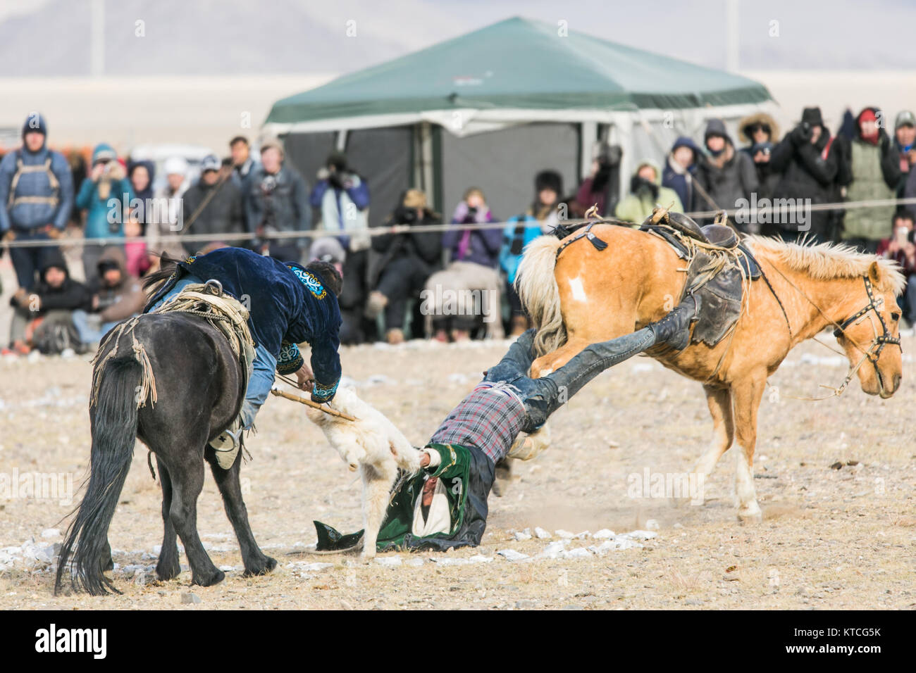A round of Buzkashi (goat polo) at the Golden Eagle Festival in Mongolia - Stock Image