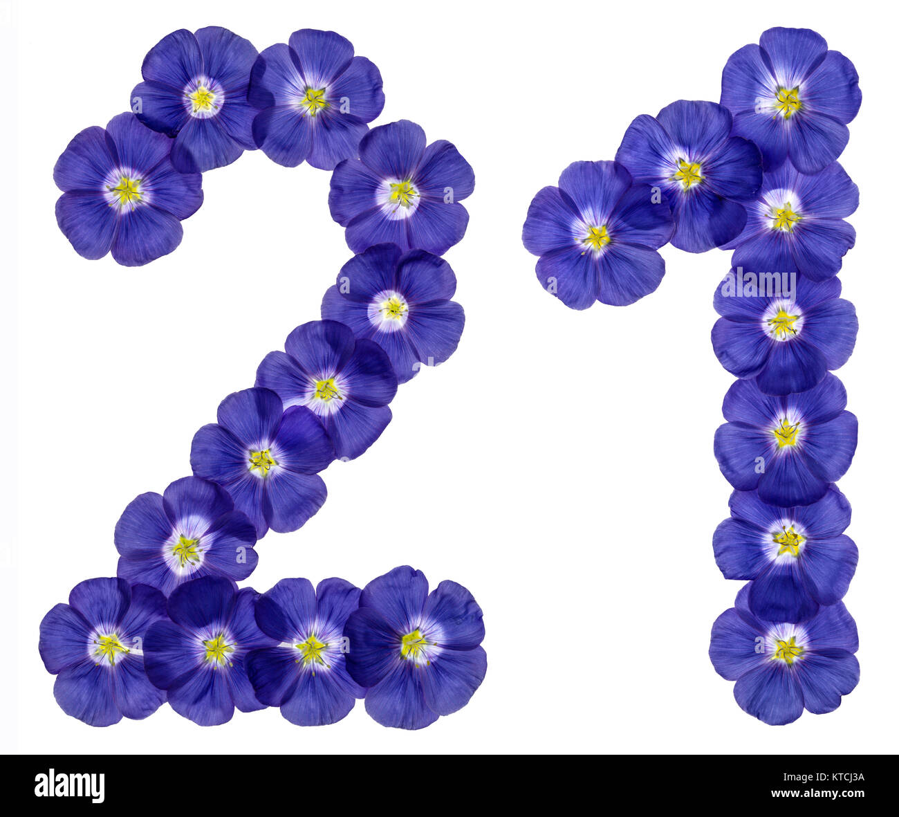 Arabic numeral 21, twenty one, twenty, from blue flowers of flax, isolated on white background Stock Photo