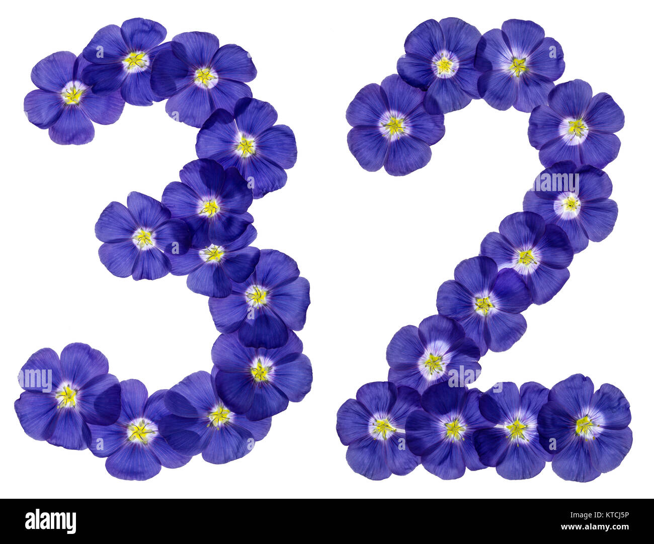 Arabic numeral 32, thirty two, from blue flowers of flax, isolated on white background Stock Photo