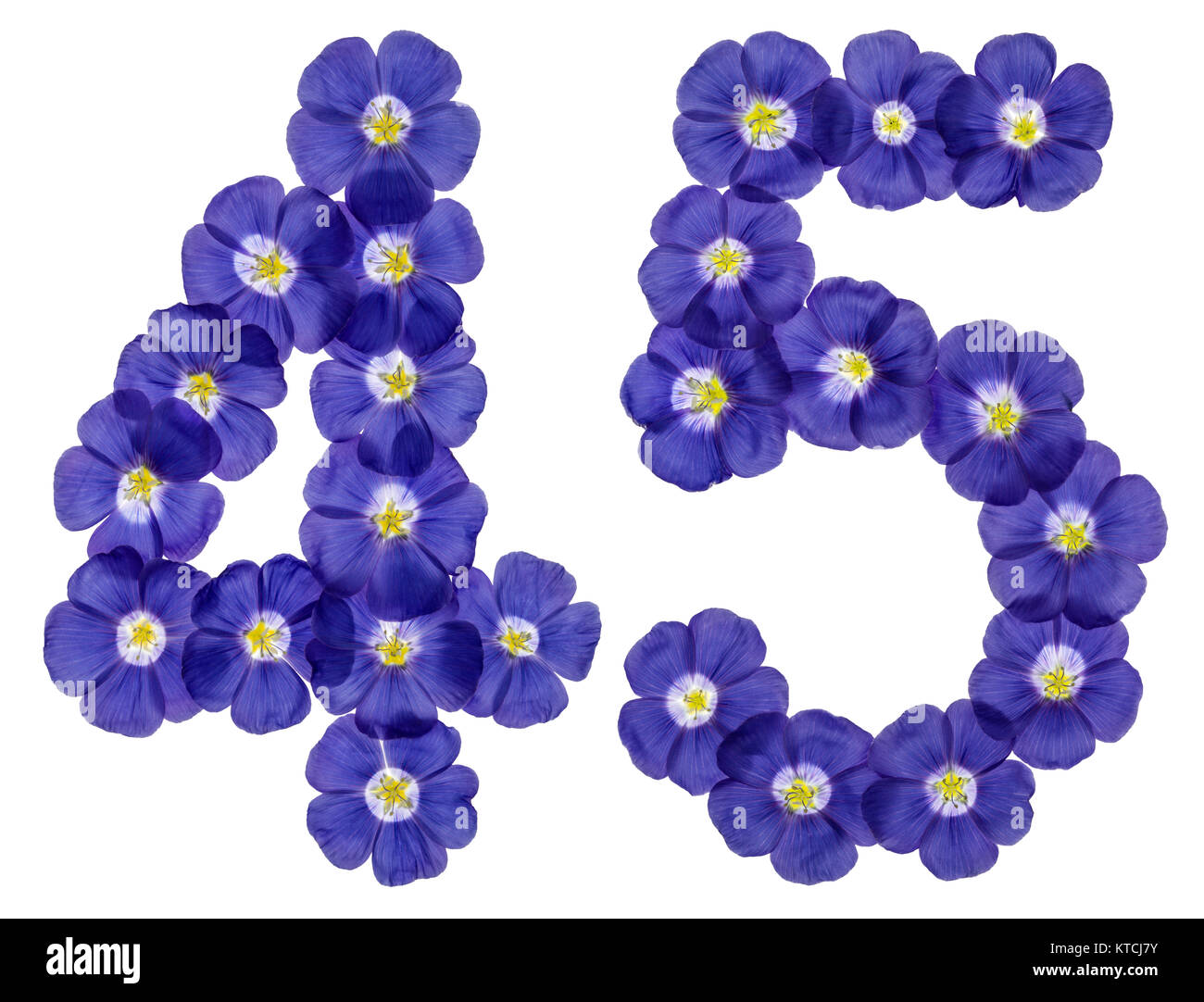 Arabic numeral 45, forty five, from blue flowers of flax, isolated on white background Stock Photo