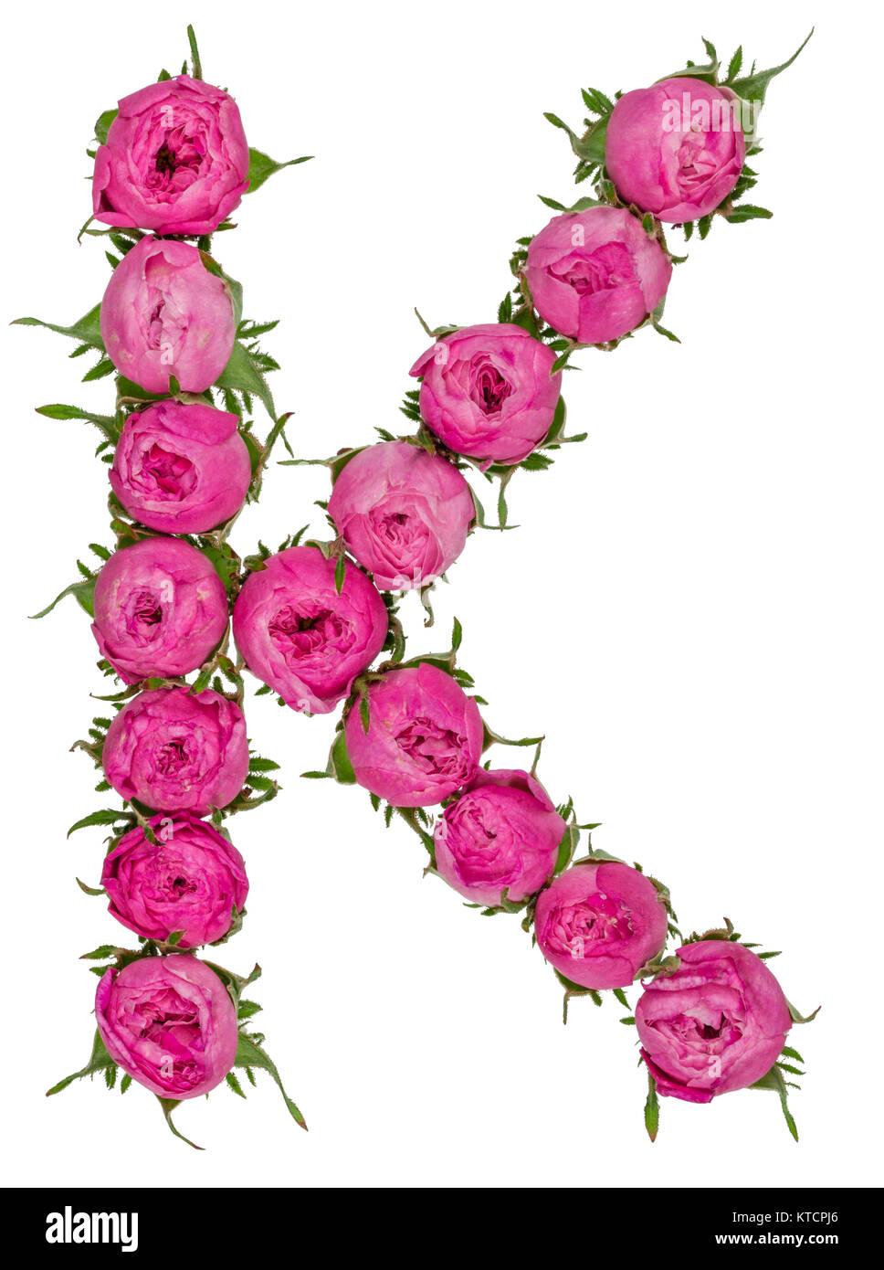 Letter k alphabet from flowers of roses isolated on white letter k alphabet from flowers of roses isolated on white background mightylinksfo