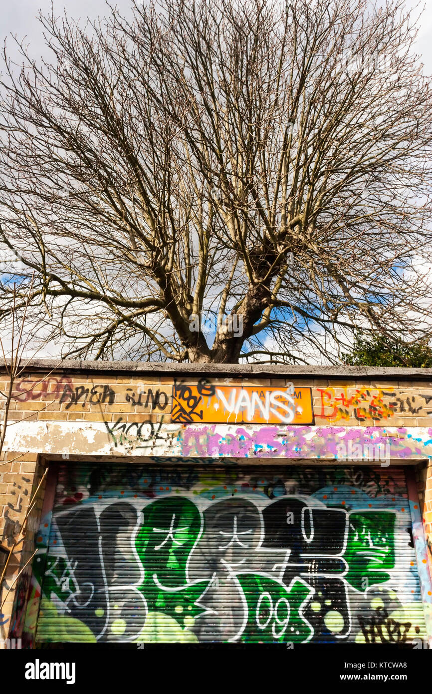 Leafless tree with graffiti building in foreground - Stock Image