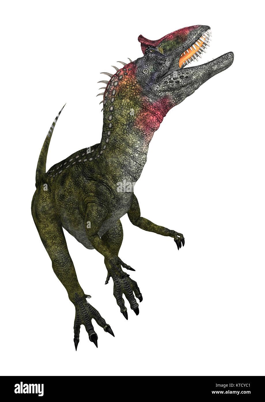 3D Rendering Dinosaur Cryolophosaurus on White - Stock Image
