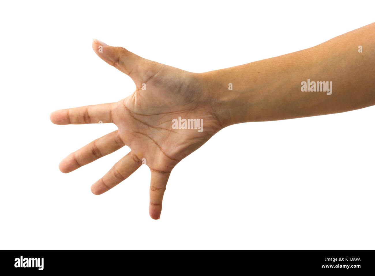 female hand gesture showing hi five or stop sign isolated on white