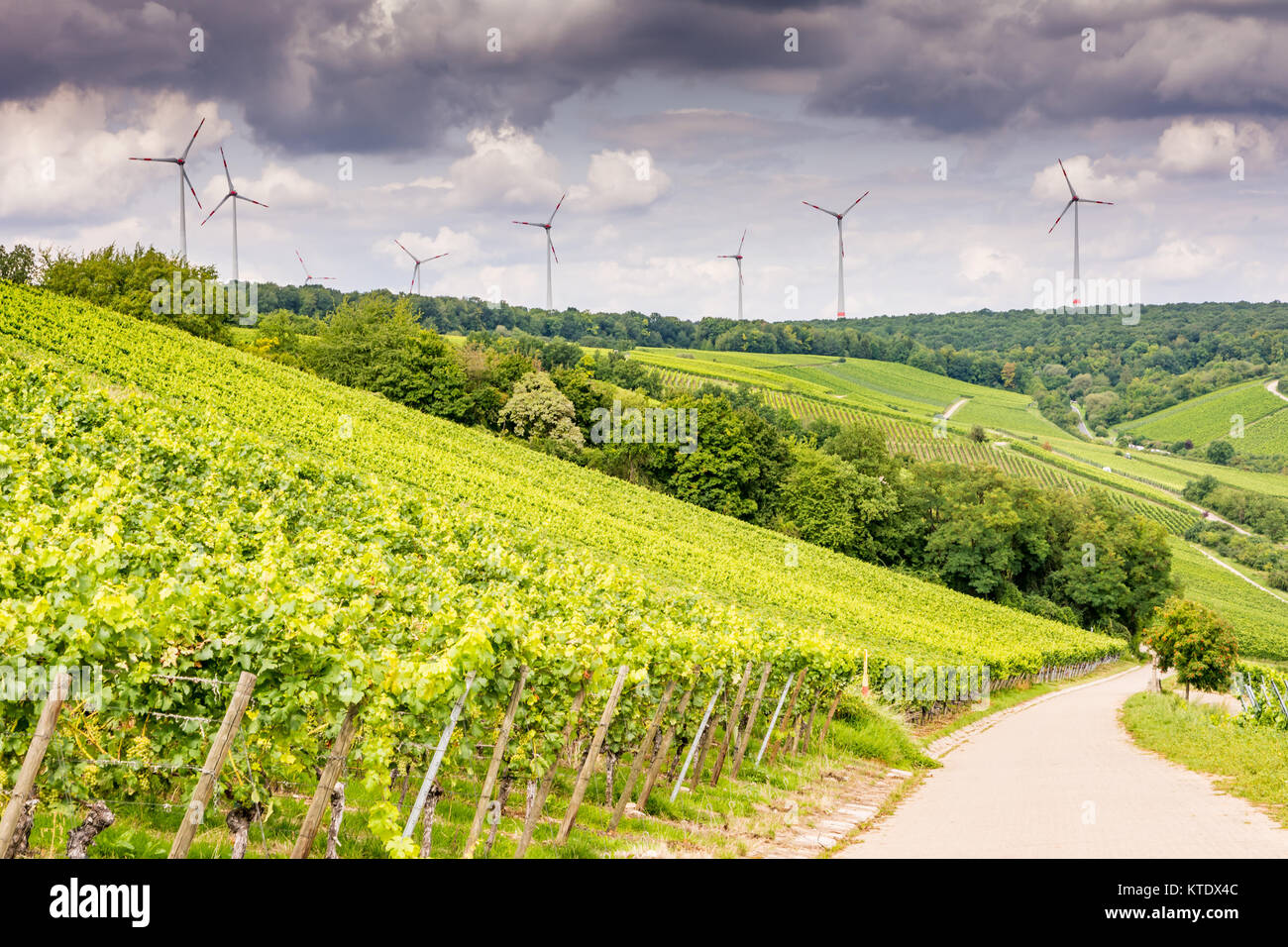Growing wine and windpower in Franconia (Germany) - Stock Image