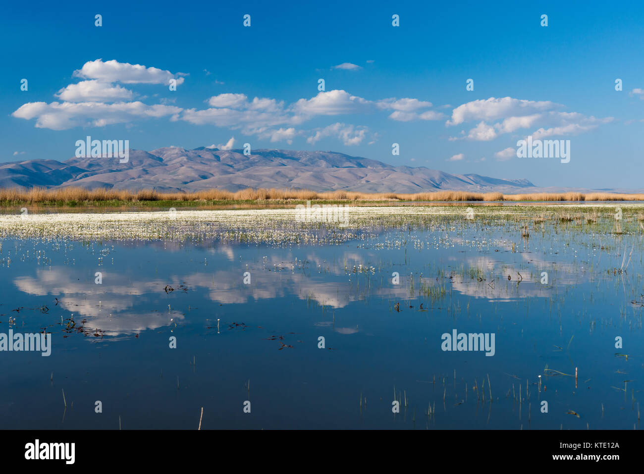 Lake Eber, situated between Cay and Bolvadin districts of Afyon, is the 12th biggest lake of Turkey - Stock Image