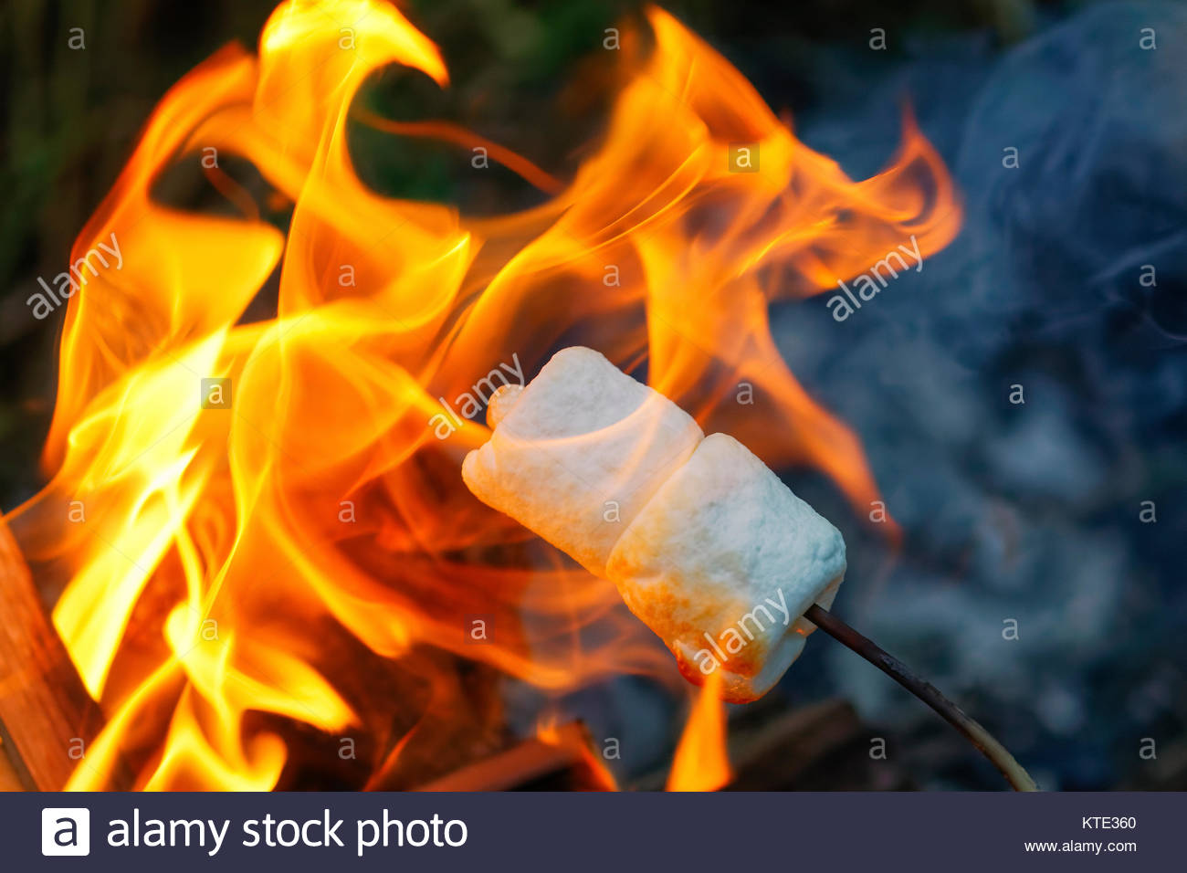 Roasting Marshmallows Over A Summer Campfire