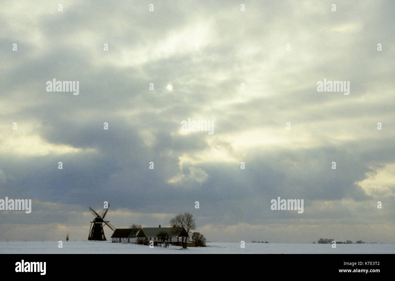 FARMHOUSE on the plain in Skåne with its associated windmill in winter 2011 - Stock Image