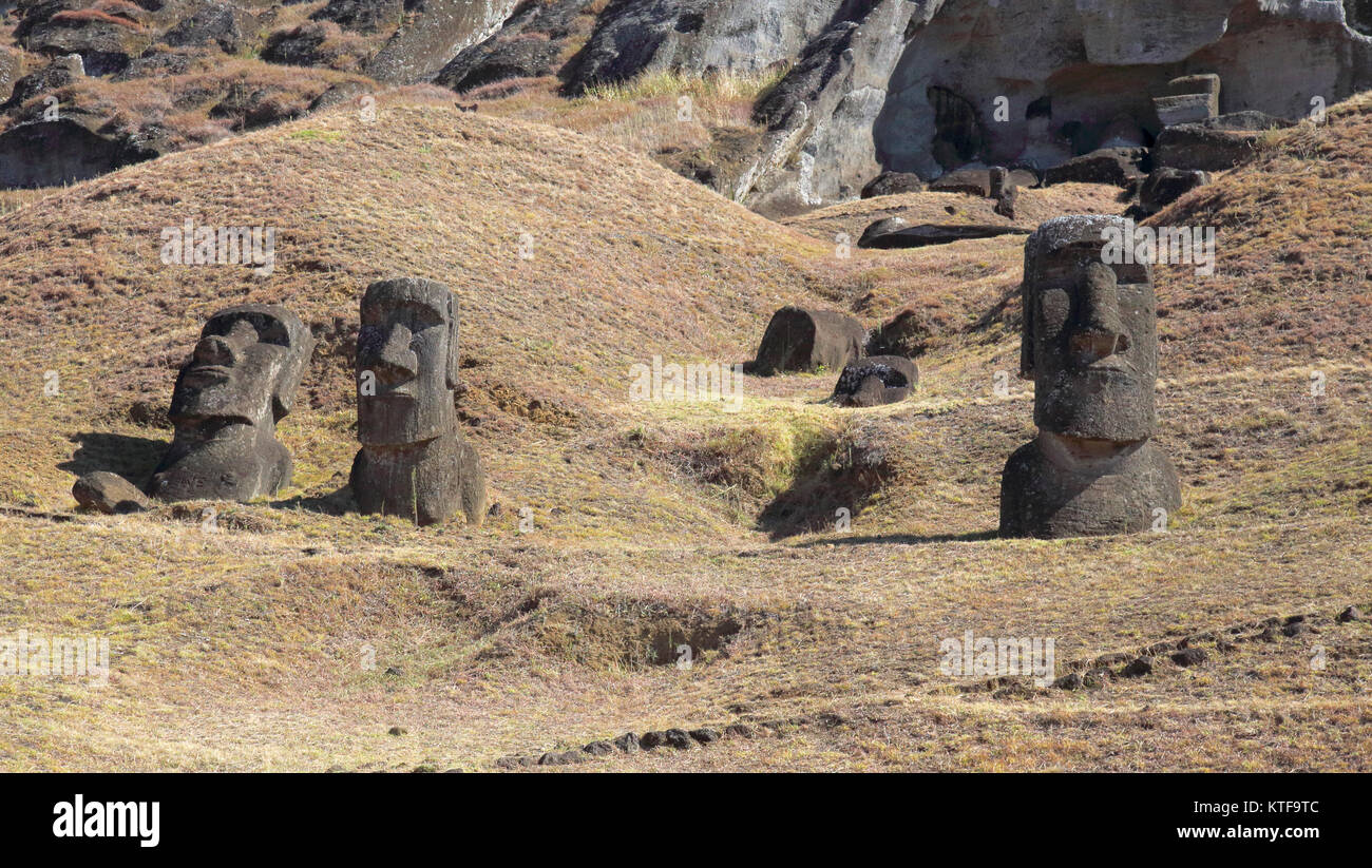 stone heads at the ancient carving site of rano raraku on easter island - Stock Image