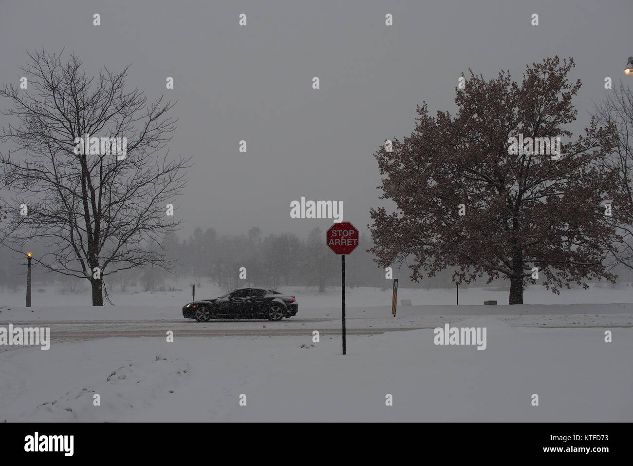 A black sports car drives through a snow storm at the intersection of Lakeside Ave. and Queen Elizabeth Dr., Dow's - Stock Image