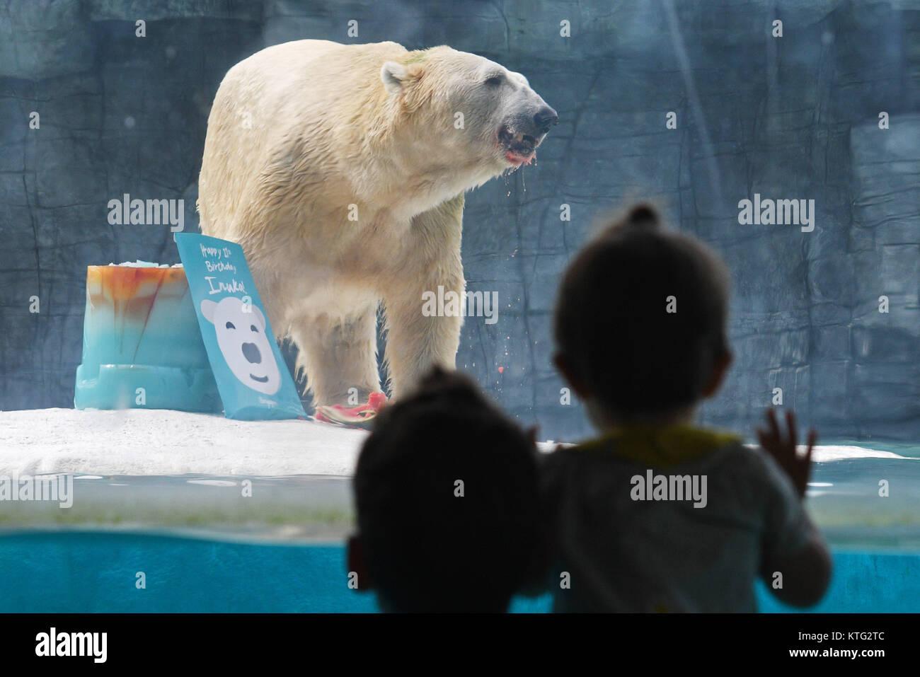 Polar Bear Eats Fish In Stock Photos & Polar Bear Eats Fish