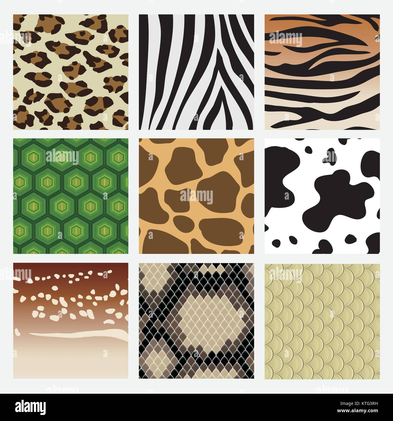 It is a pattern collection of animal skin. Including snake, deer tiger turtle giraffe cow zebra leopard. - Stock Vector