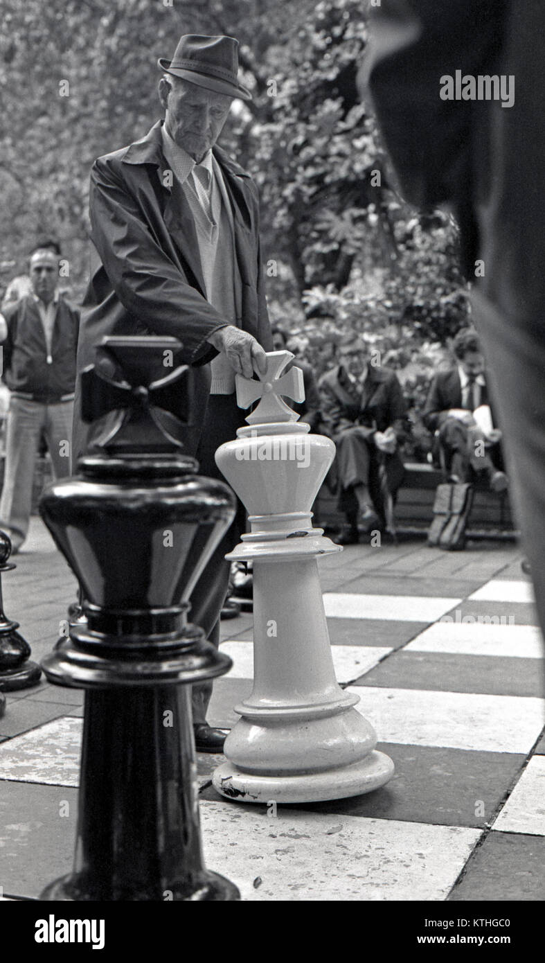 men playing chess, Sydney domain, Australia - Stock Image
