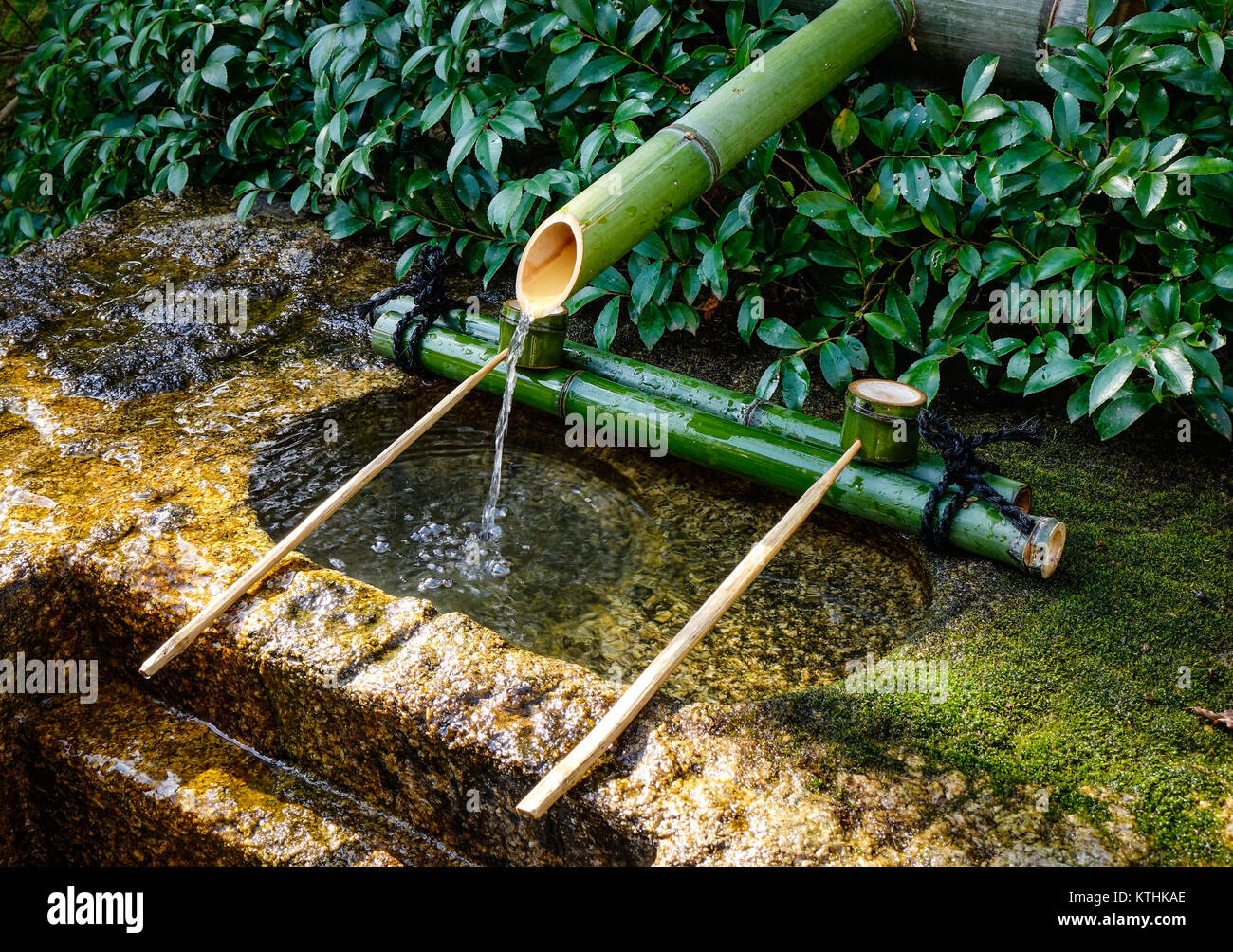 Water Basin At Japanese Zen Garden For Relaxation Balance And Harmony  Spirituality Or Wellness.