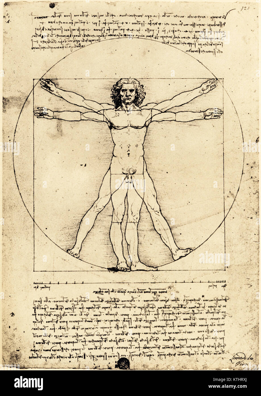 Vetruvian Man, by Leonardo da Vinci created c. 1480-1490. The drawing, demonstrating proportions of the human body, - Stock Image