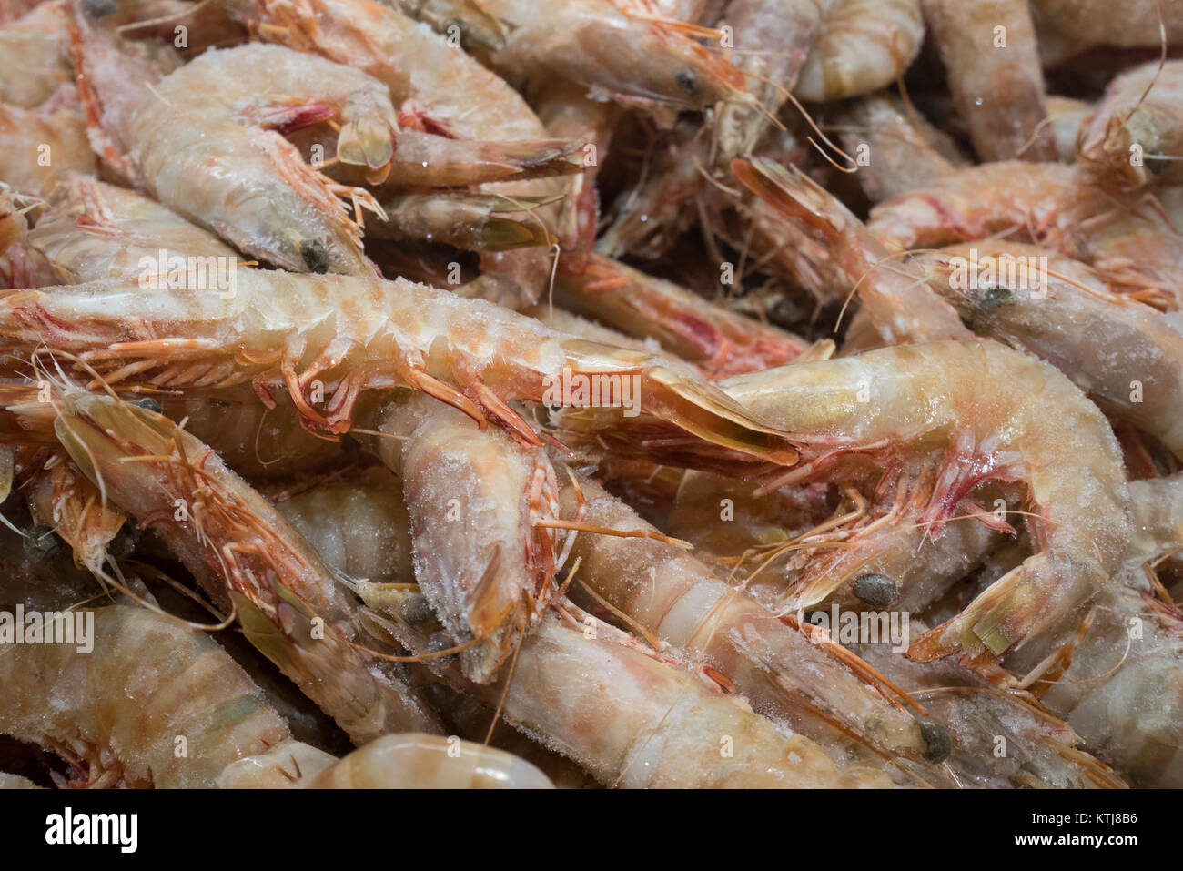 raw seafood in grocery store sydney australia - Stock Image