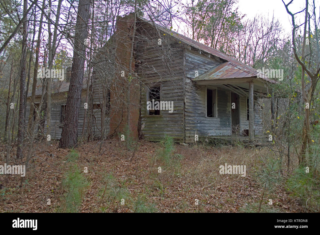 Old Rundown House In The Woods