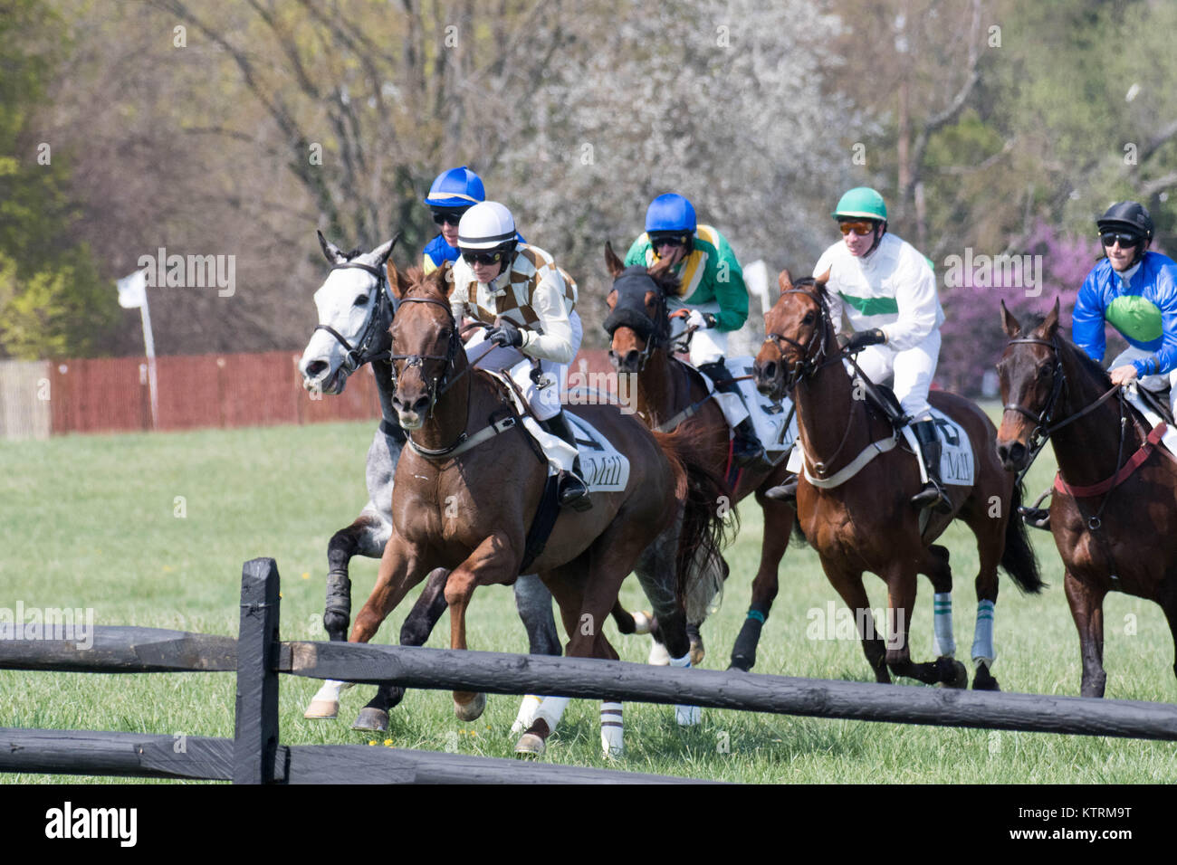 Jockeys contend for prime position approaching a hurdle. Stock Photo