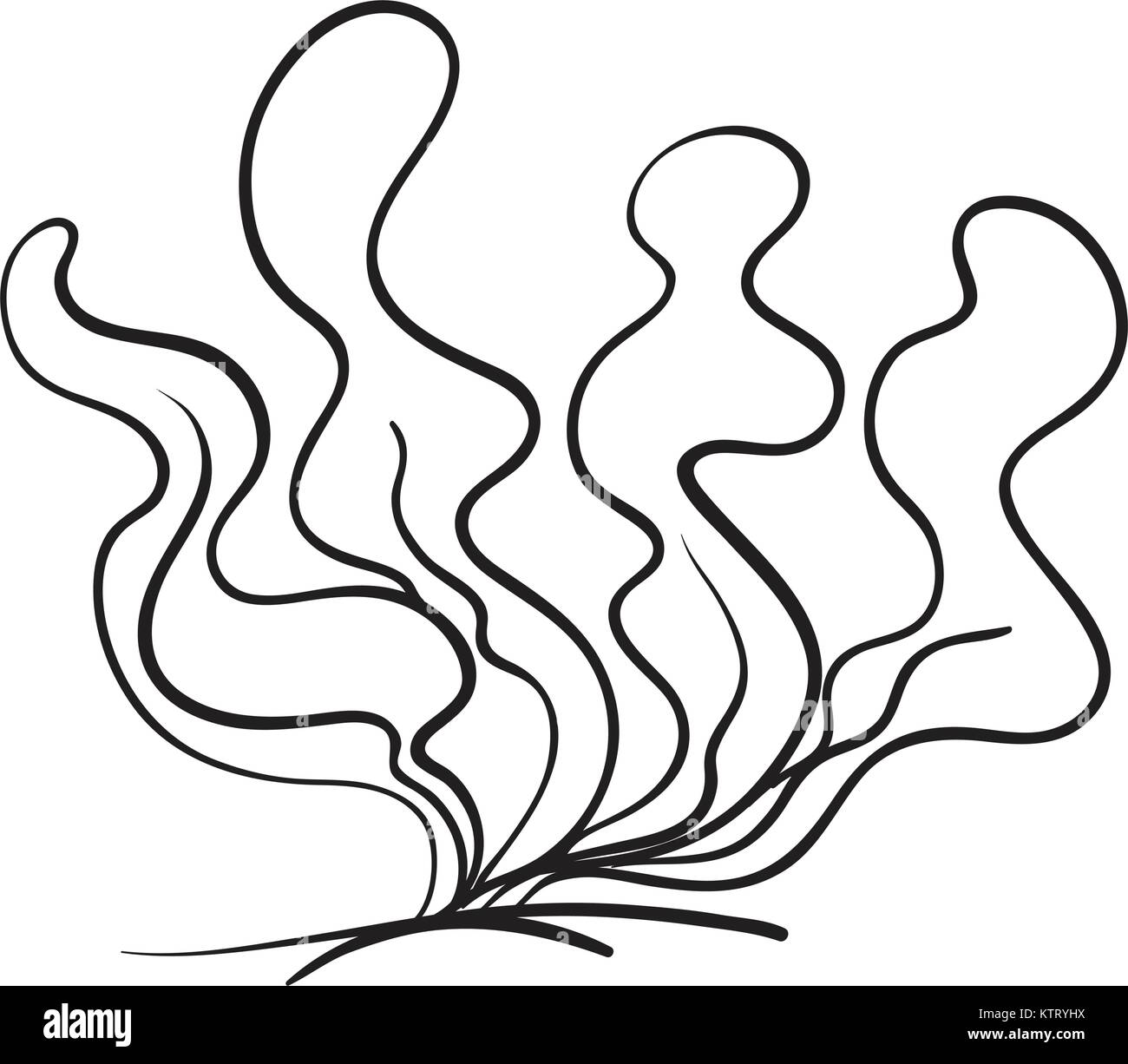 Underwater Plant Black And White Stock Photos Images Alamy