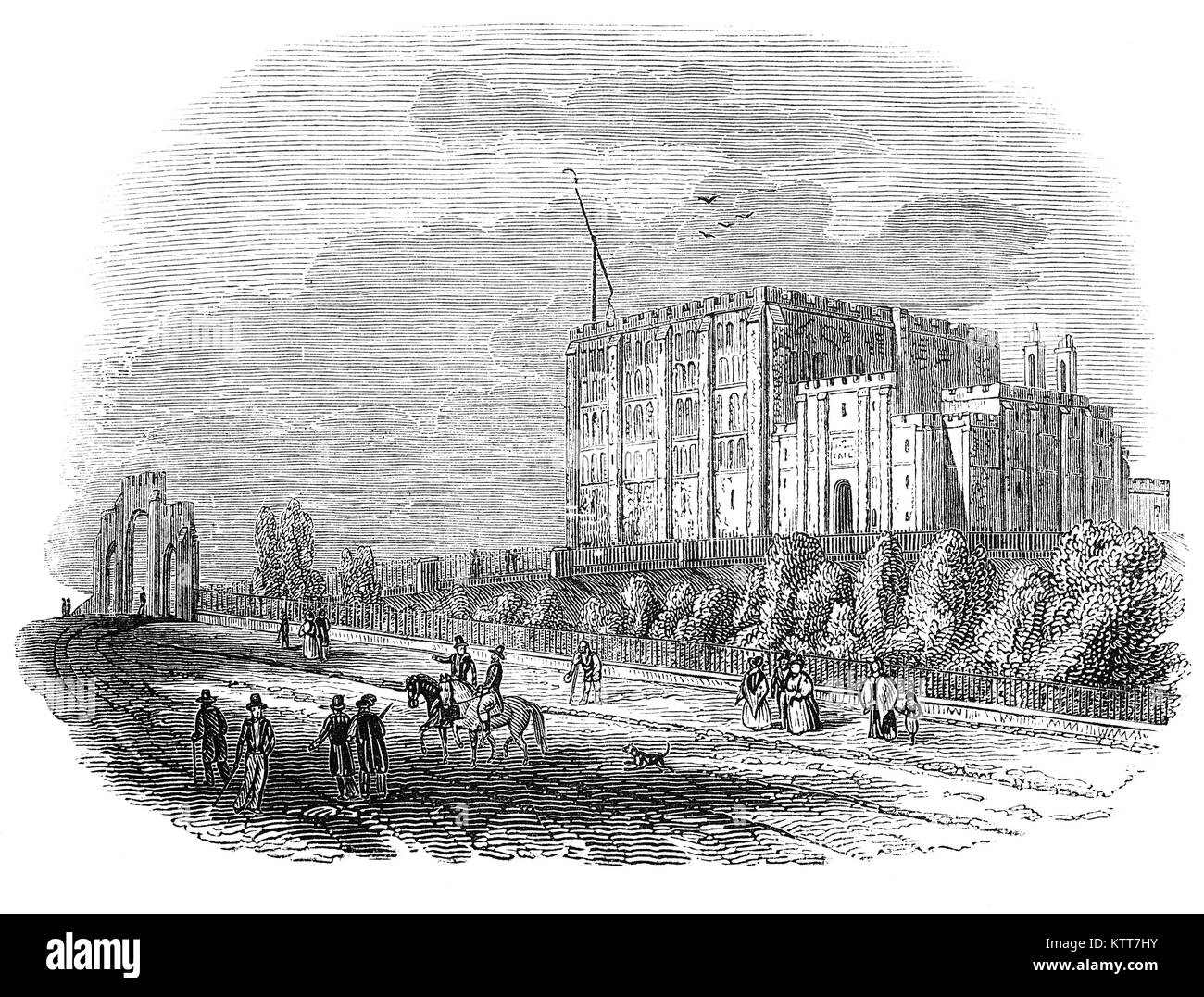 Norwich Castle is a medieval royal fortification in the city of Norwich, in the English county of Norfolk. It was - Stock Image