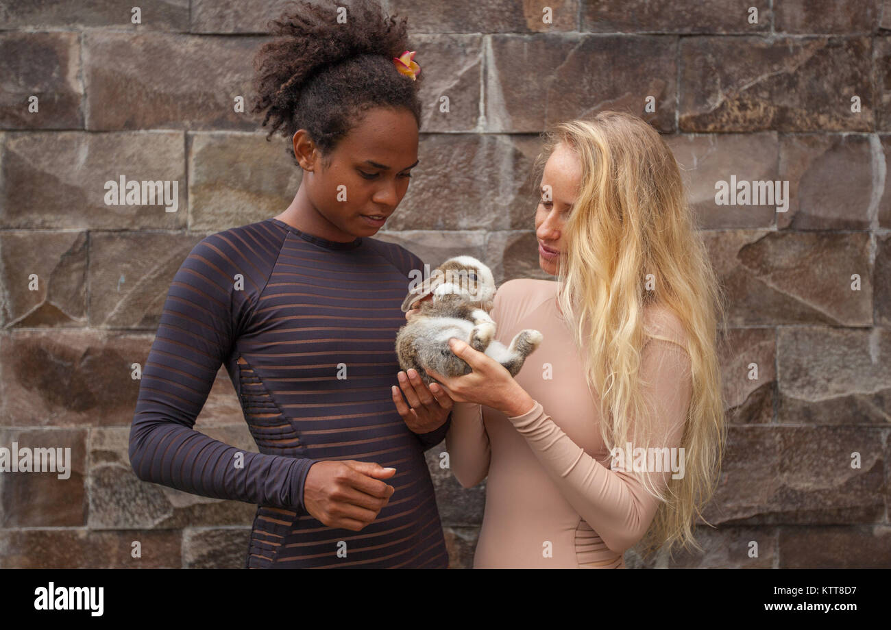 mixed race couple young girls holding together Christmas bunny rabbit in hands - Stock Image