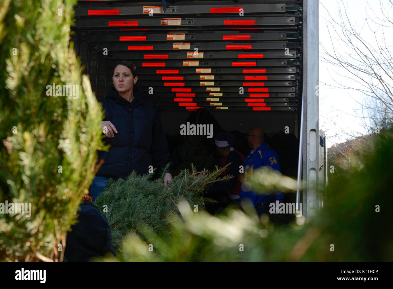 More than a dozen Airmen assigned to the 105th Airlift Wing volunteered their time to help load Christmas trees Stock Photo