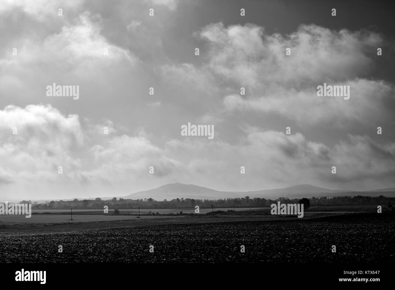 Cloudy autumn morning dark black and white landscape - Stock Image