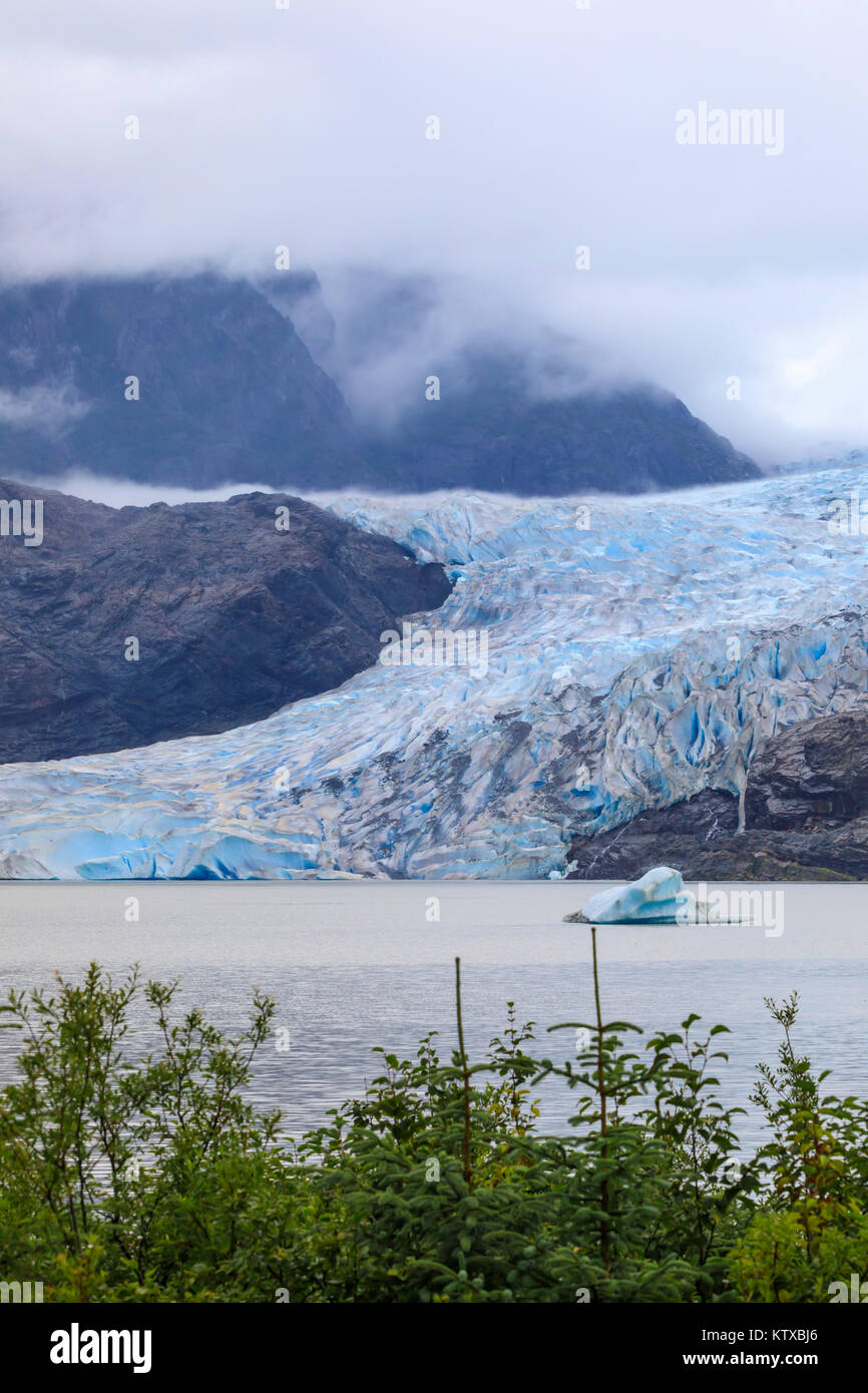 Mendenhall Glacier and Lake, with iceberg, bright blue ice, forest and mist, from Visitor Centre, Juneau, Alaska, - Stock Image