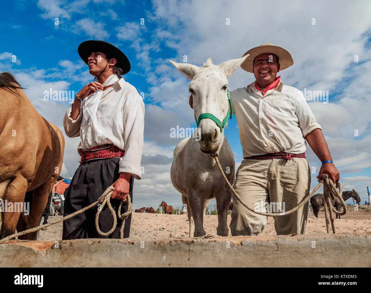 Gauchos with horses, Vallecito, San Juan Province, Argentina, South America - Stock Image