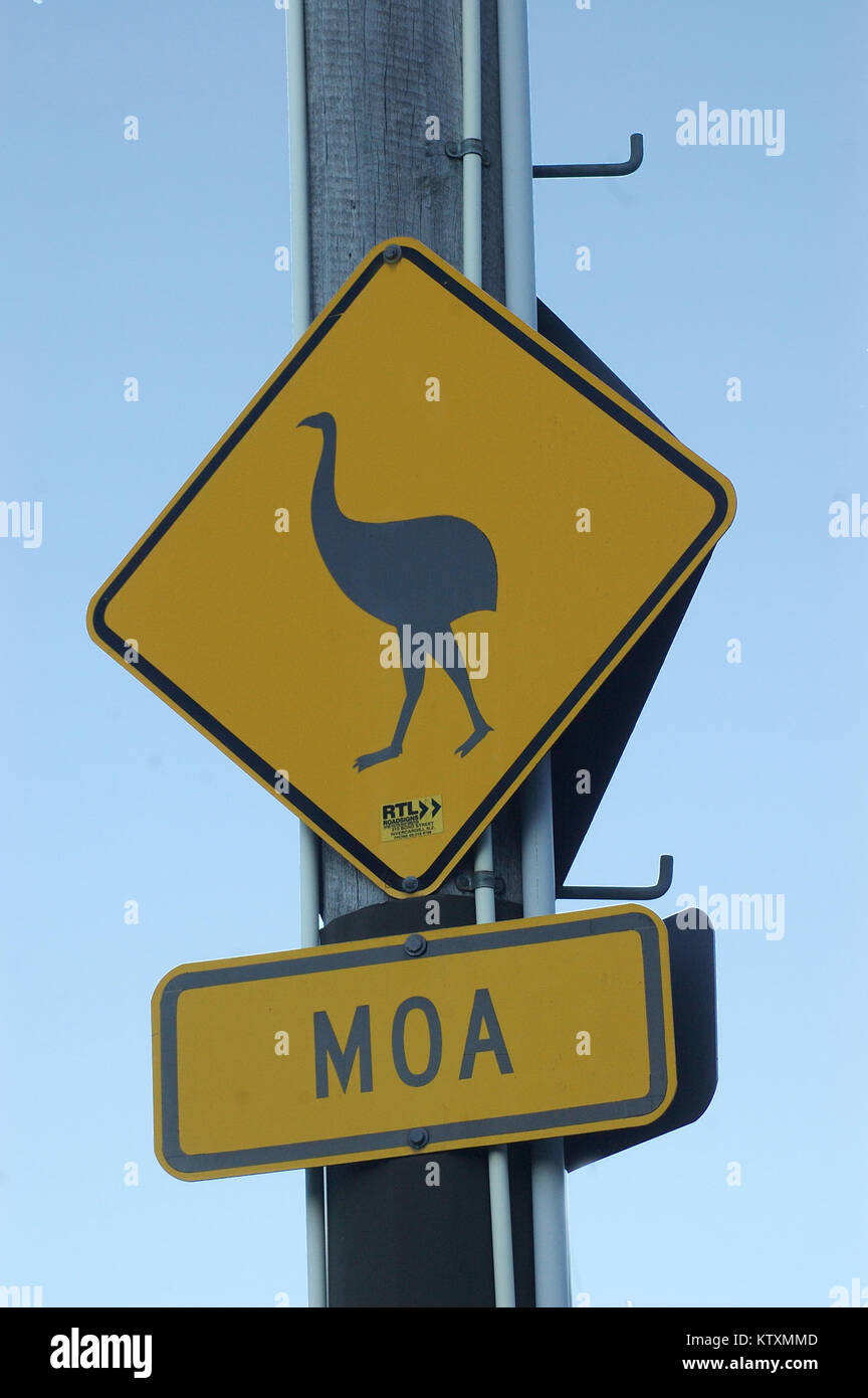 Tongue-in-cheek sign warning about moas on the road near Bealey, Canterbury, South Island, New Zealand. The moa - Stock Image