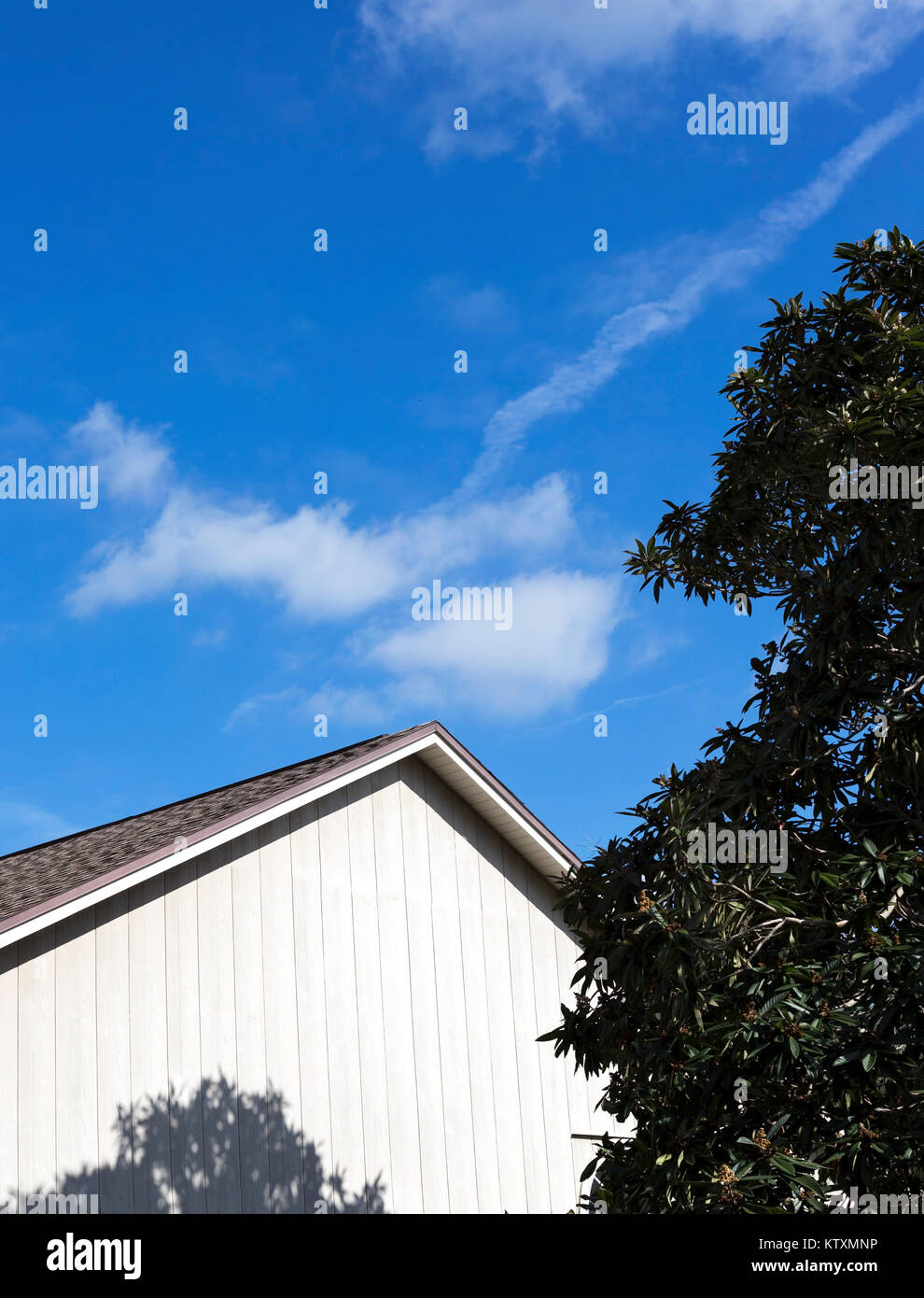 Vivid blue skies with clouds, tree, rooftop and shadows in bright midday sun Stock Photo