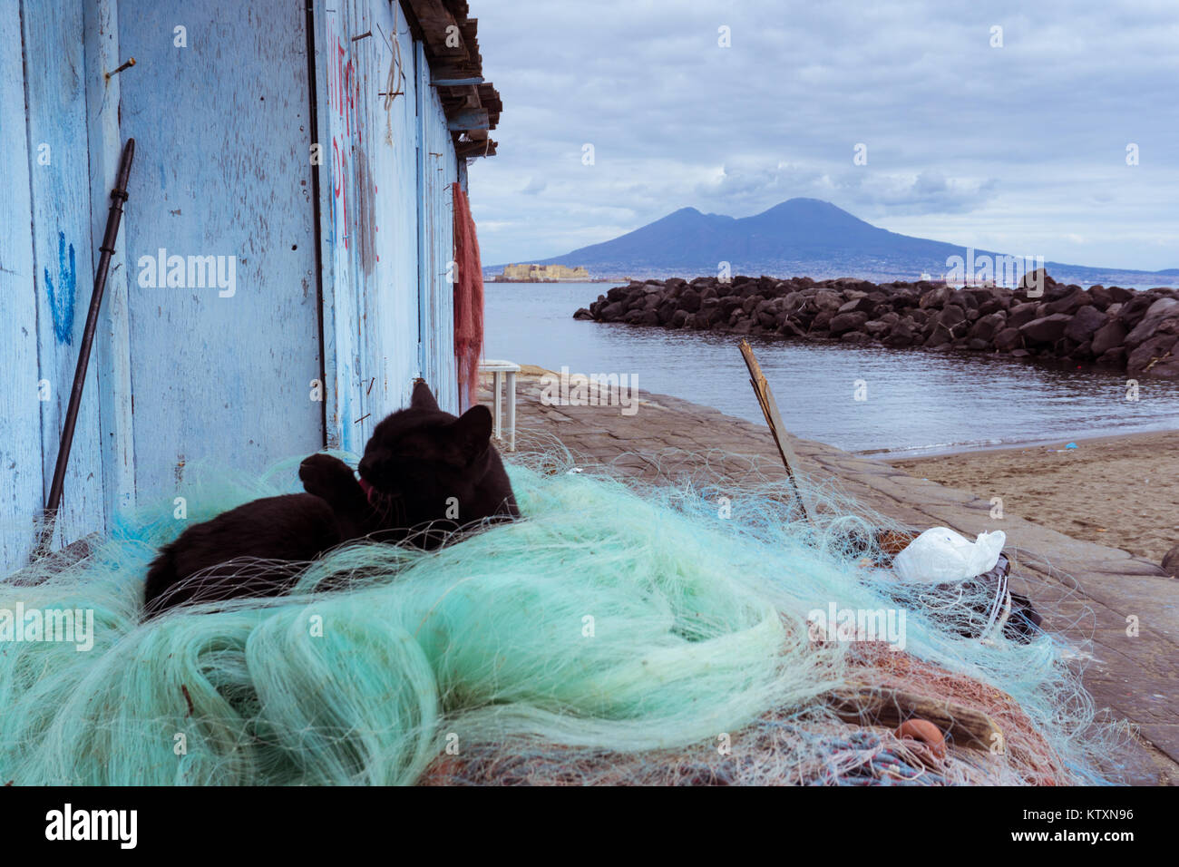 a black cat sleeping and washing him self under the shadow of the naple's volcano, the Vesuvio Stock Photo
