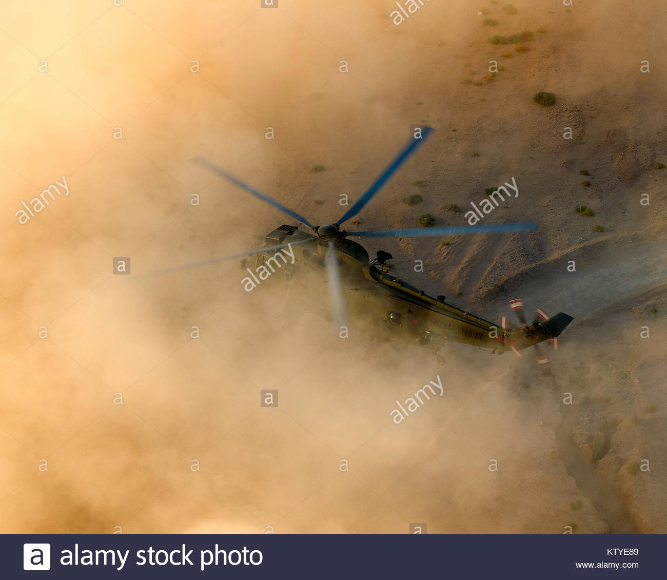A Sea King helicopter with 845 Naval Air Squadron experiences a 'brownout' in while landing in the desert. - Stock Image