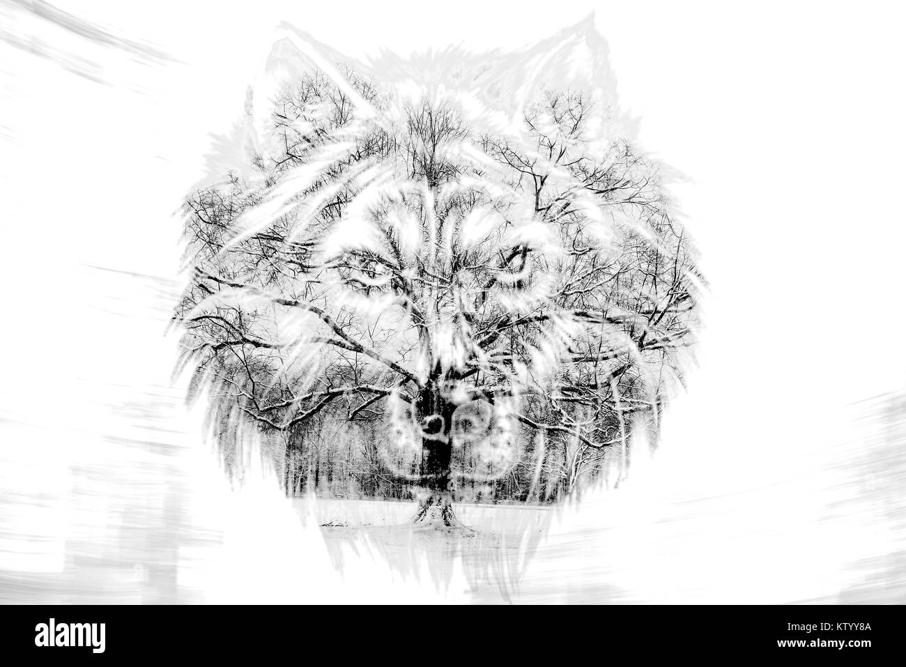 Tree of life and wolf double exposure Stock Photo: 170259162 - Alamy
