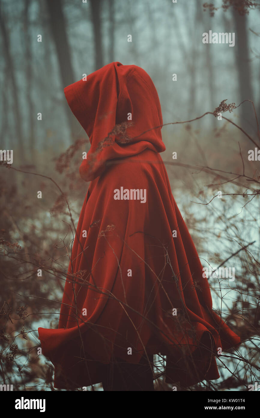 Red cloak in forest of fog - Stock Image