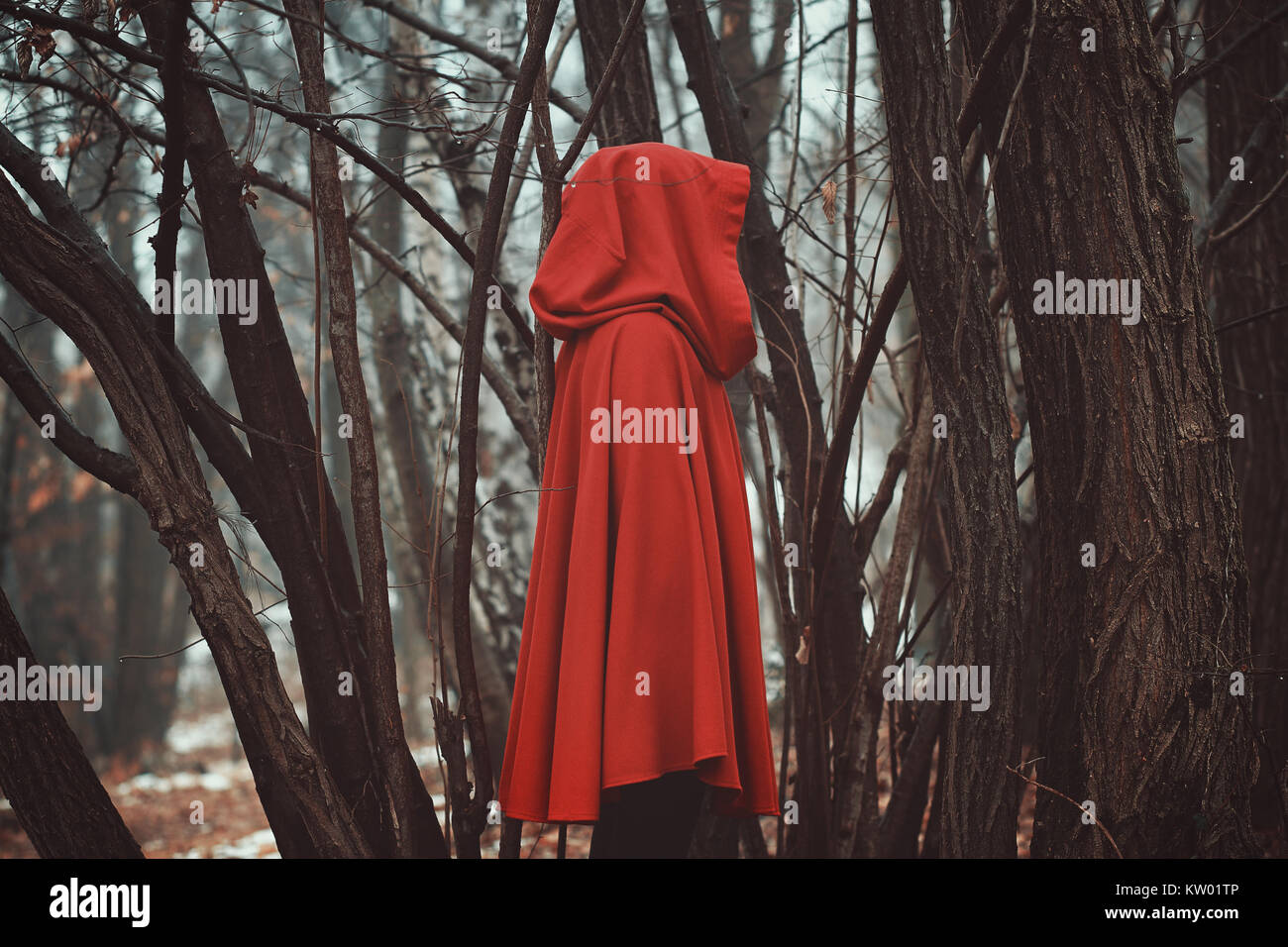 Mysterious hooded figure in misty forest Stock Photo