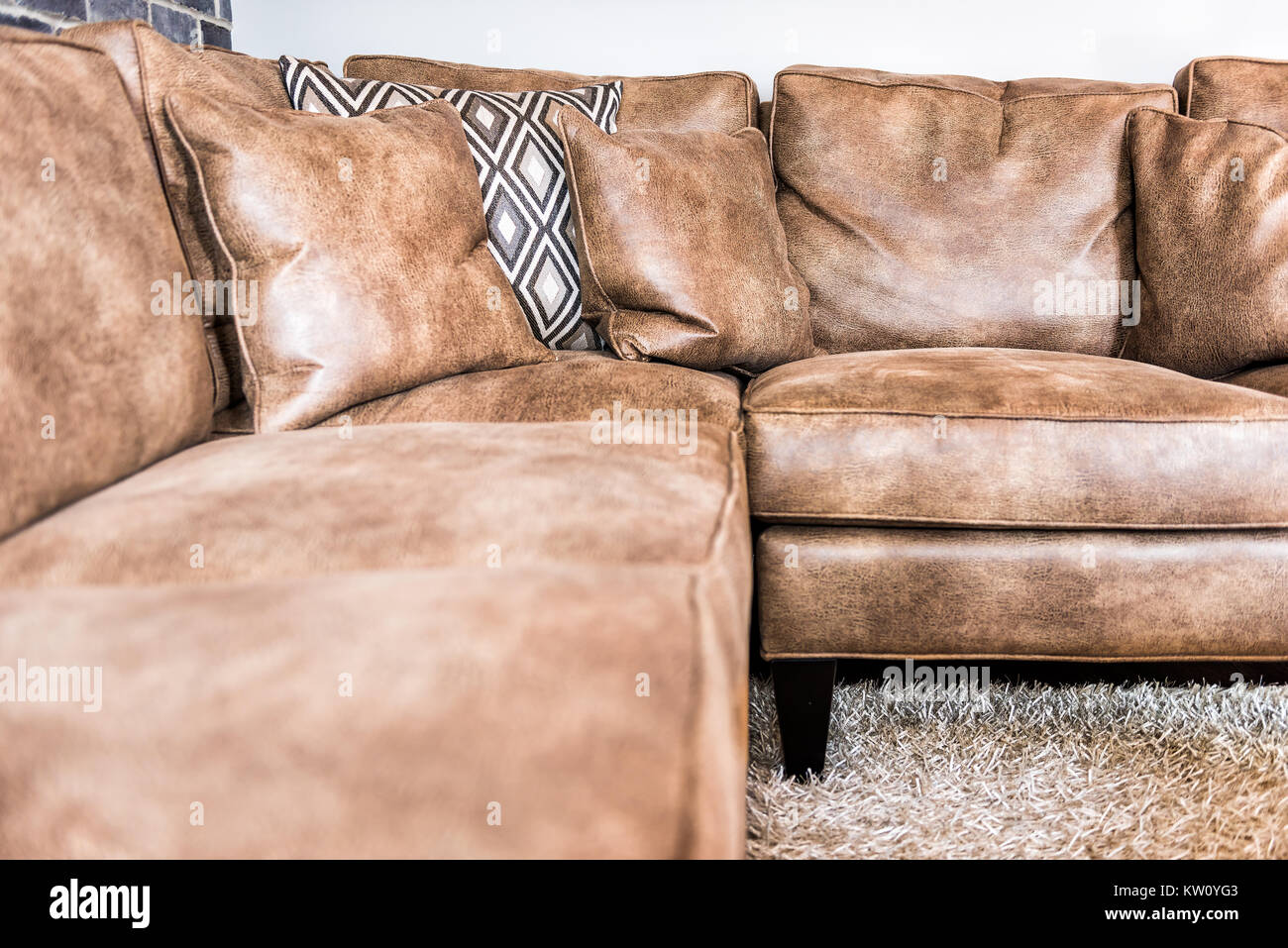 Elegant Modern Room Closeup Of Leather Couch And Fluffy Rug
