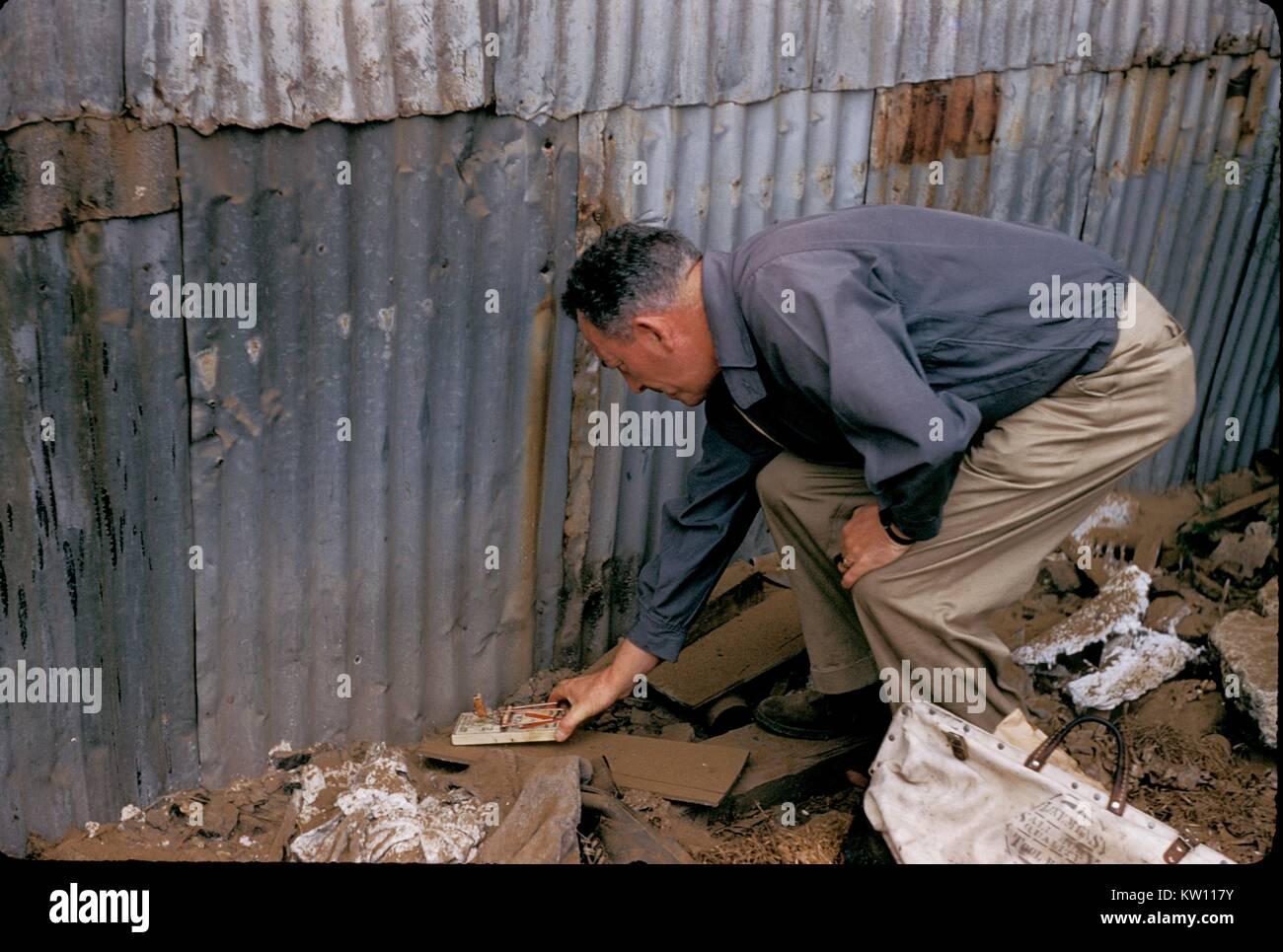 Old Vintage Rat Trap Stock Photos & Old Vintage Rat Trap Stock ...