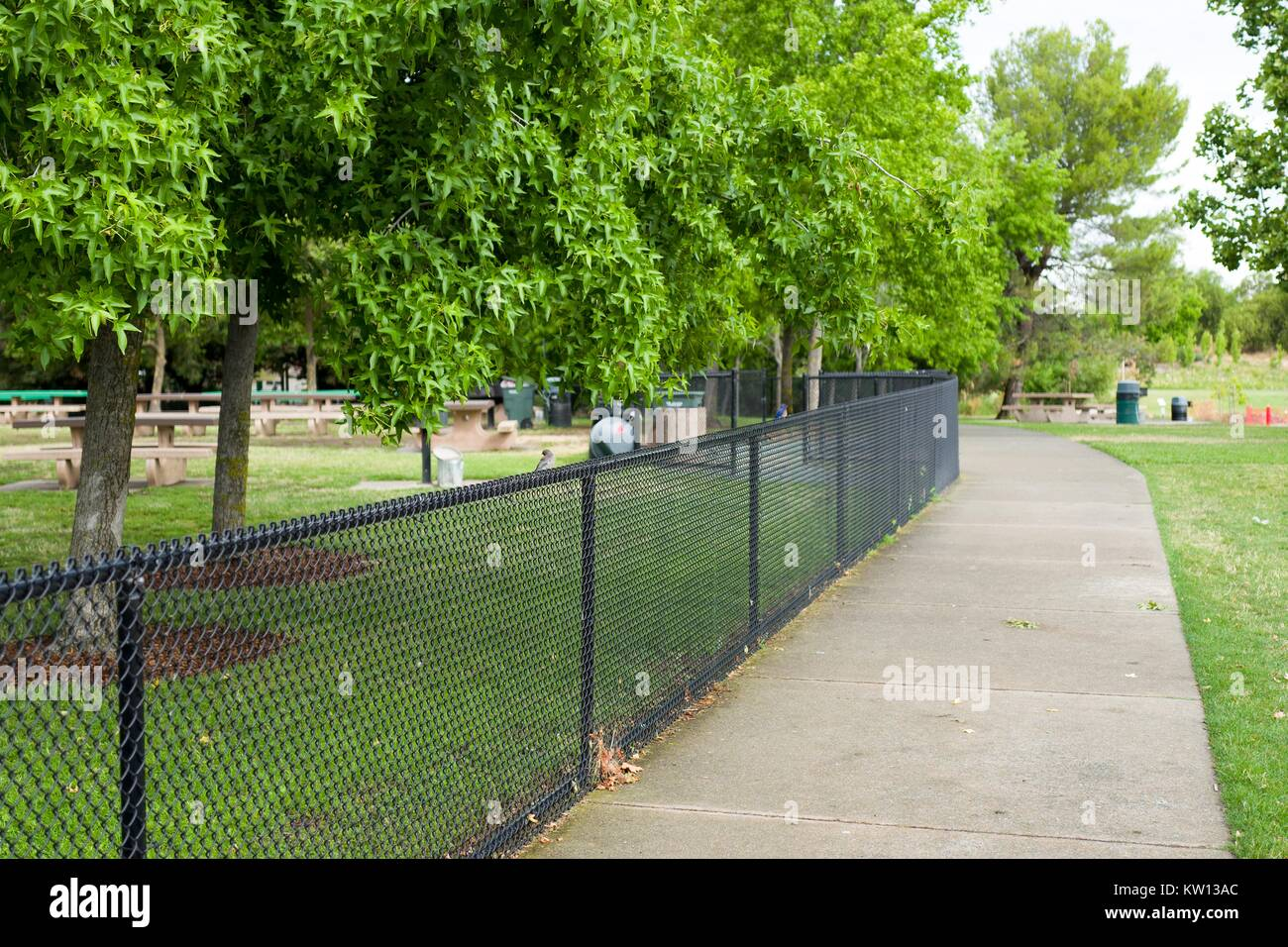 Path and fence enclosing picnic area in Heather Farms Park, a public park in the San Francisco Bay Area, California, - Stock Image