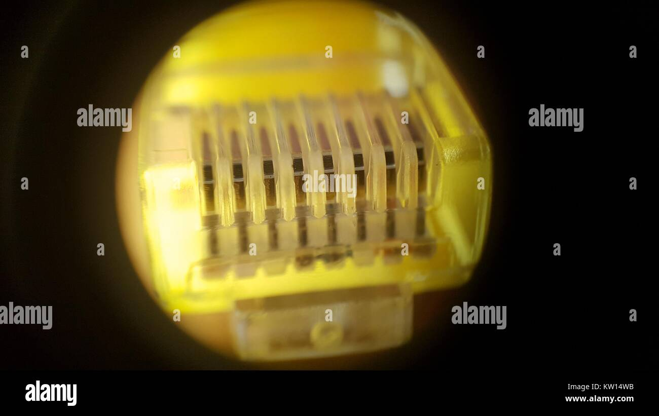 Light microscope image at approximately 30x magnification showing the electrical contacts and connector at the end - Stock Image