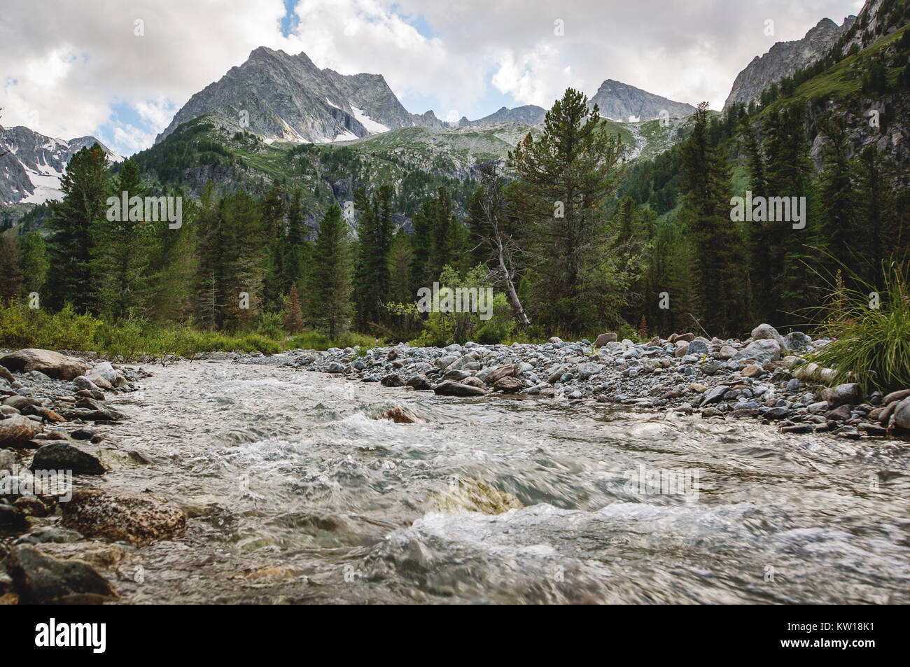 beautiful mountain river with rapid flow. Altai landmark and beauty place. - Stock Image