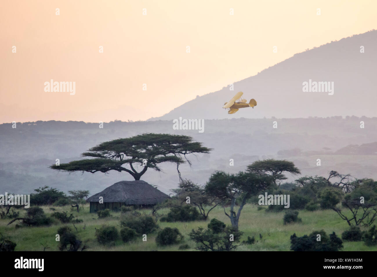 A 1930's Waco biplane flying at dawn over Laikipia, just above the land, Lewa Wilderness,Lewa Conservancy, Africa - Stock Image