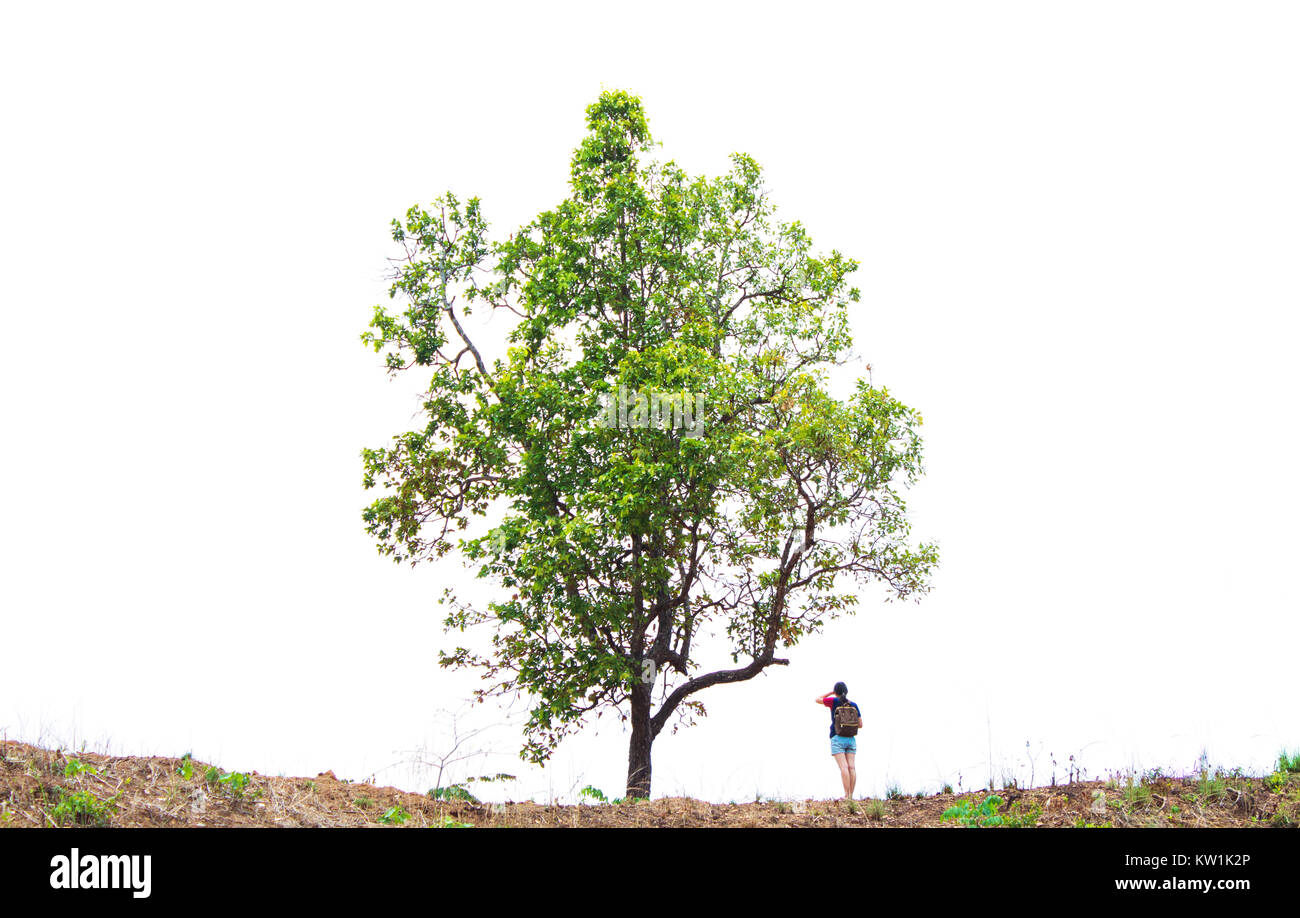Left me alone, she,People stand trees on a white background