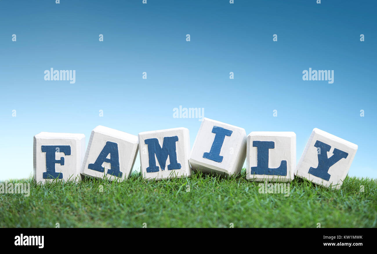 FAMILY sign made of wooden blocks on a green grass - Stock Image