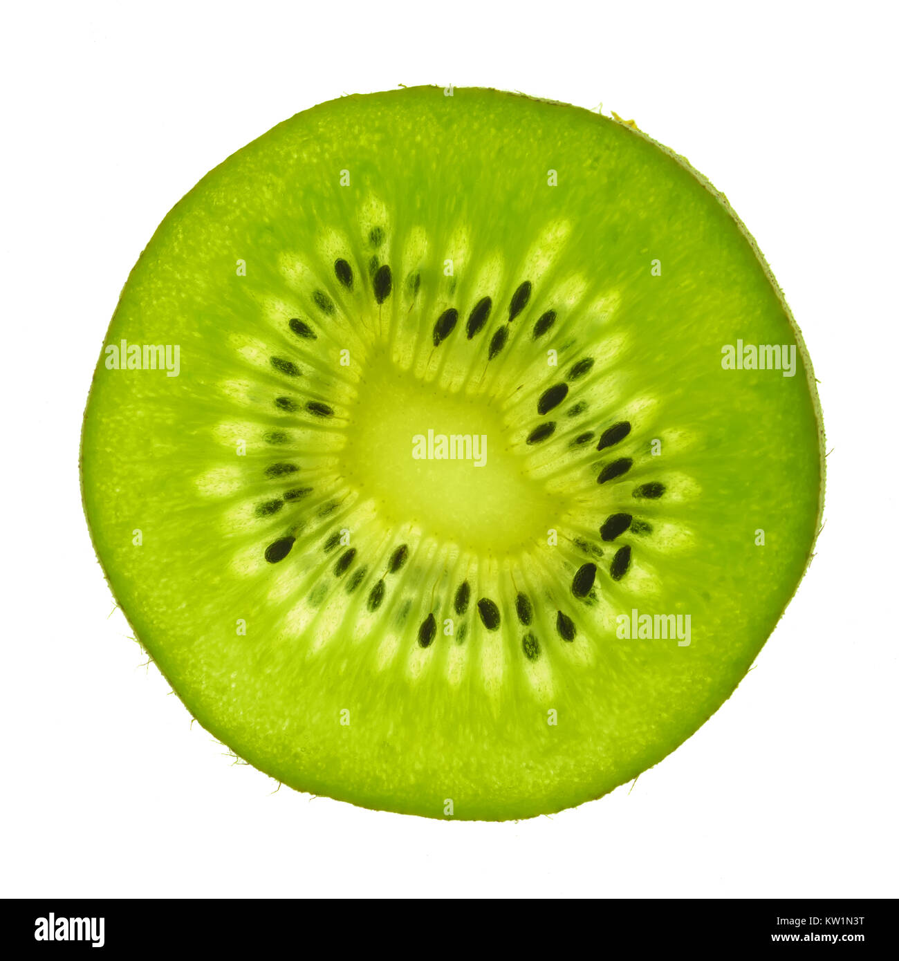 macro top view of a actinidia kiwi fruit slice, backlight - Stock Image