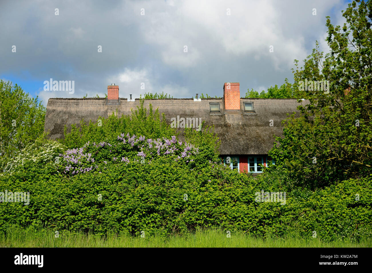 Wismar, fishing house in the monument place Lifting, Fischerhaus im Denkmalsort Hoben - Stock Image
