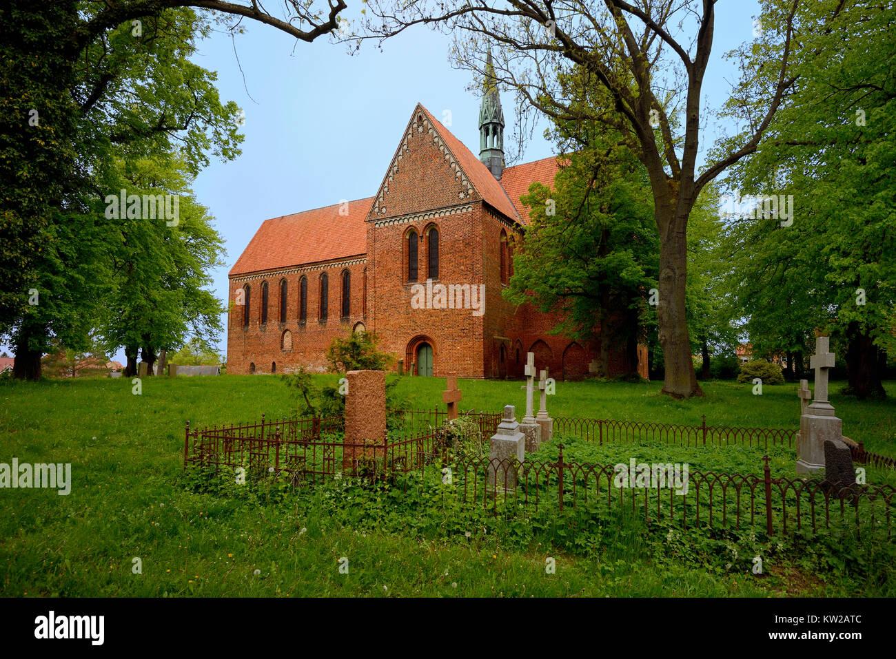 New cloister, new cloister minster, Neukloster, Neukloster Klosterkirche - Stock Image