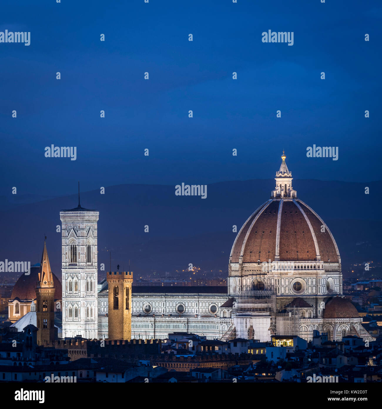 Florence blue hour - Stock Image
