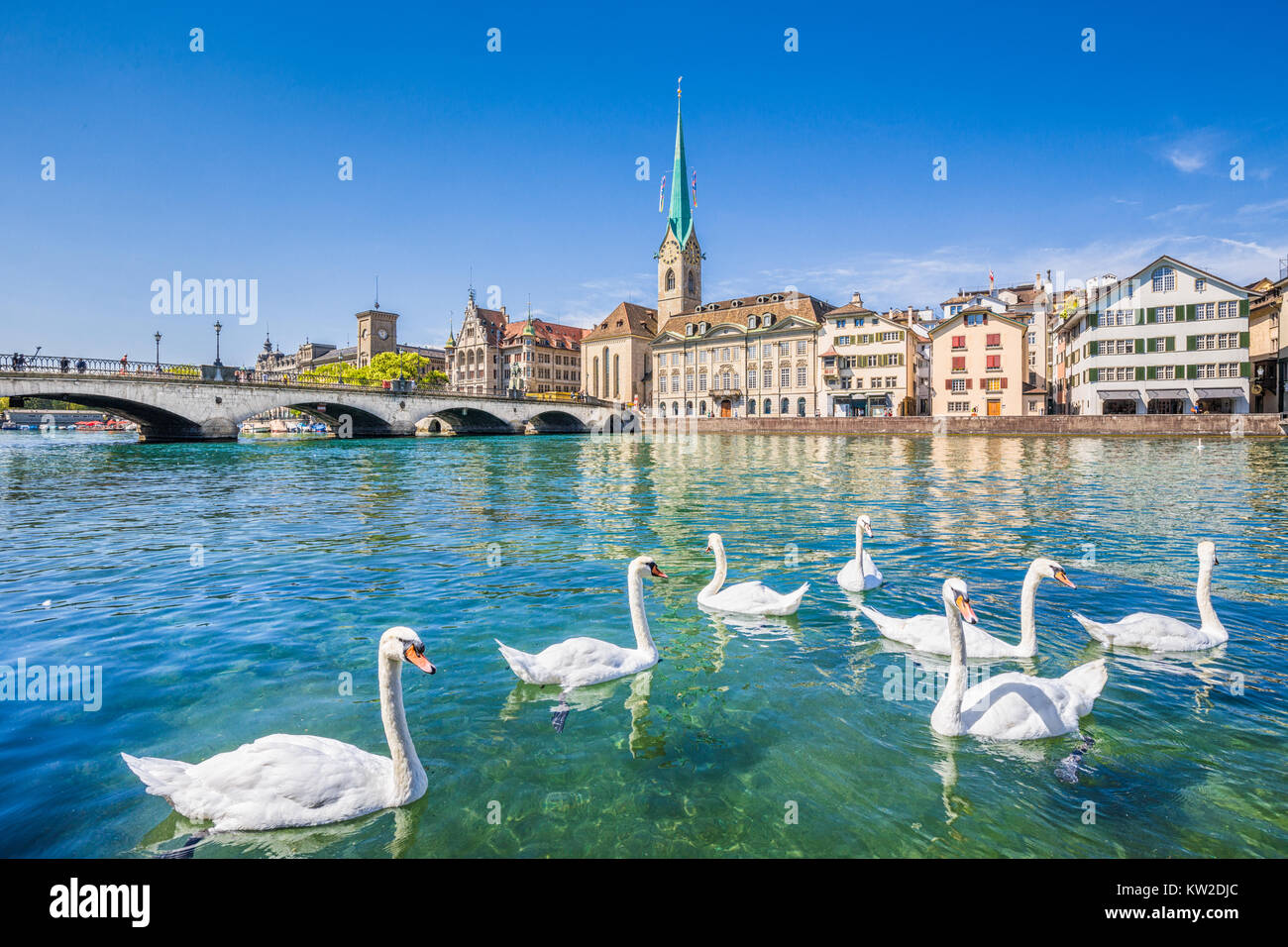 Beautiful view of the historic city center of Zurich with famous Fraumunster Church and swans on river Limmat on - Stock Image