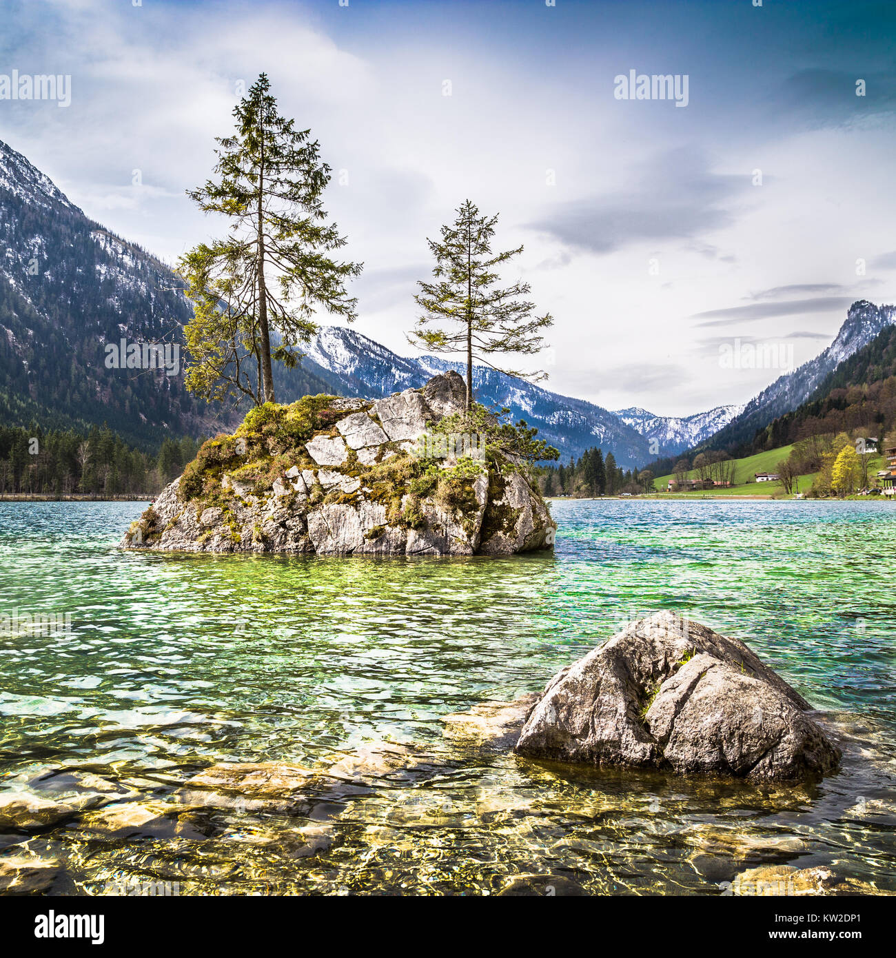 Idyllic landscape with trees on a rock at lake Hintersee, Nationalpark Berchtesgadener Land, Bavaria, Germany - Stock Image